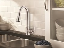 Danze Kitchen Faucets