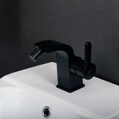 Moen Bidet Faucets