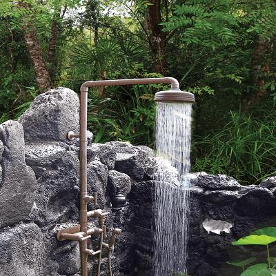 Sonoma Forge Shower