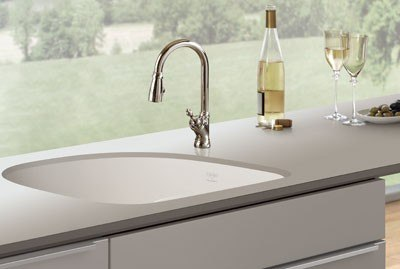 Franke Fireclay Kitchen Sink PRK11021