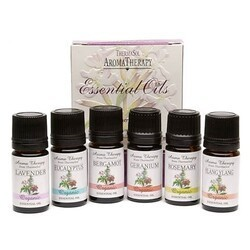THERMASOL B01-1577 5 ML AROMATHERAPY ESSENTIAL OIL - PACK OF 6