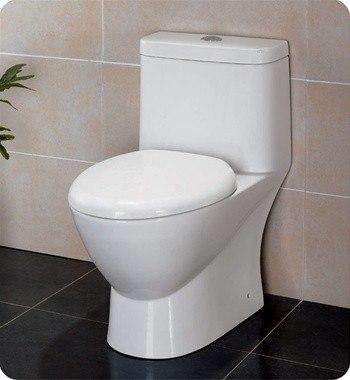 FRESCA FTL2346 SERENA ONE-PIECE DUAL FLUSH TOILET W/ SOFT CLOSE SEAT