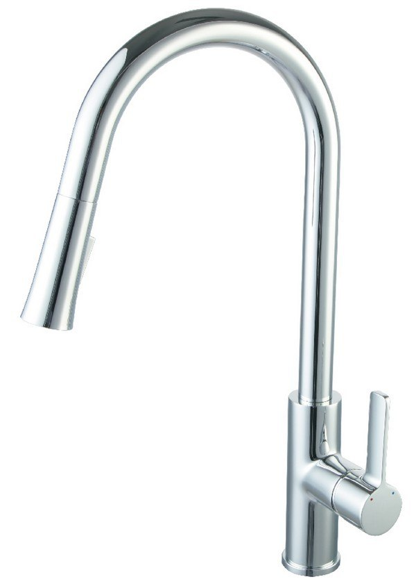 Blossom F01 201 01 Single Handle Pull Down Kitchen Faucet in Chrome